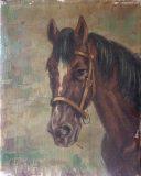 Pferdekopf (Michael Borbely)