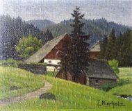 Mühle im Schwarzwald (Friedrich Nierholz)