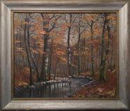 Bachlauf im Herbstwald (C. Ruzicka)